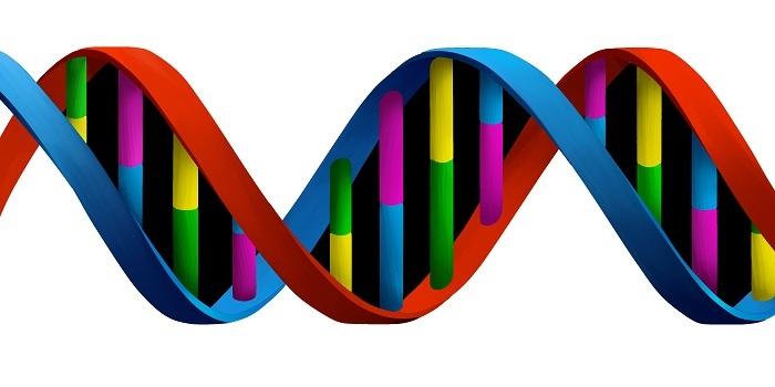 Dentsu Aegis Network'ün data birimi DAN DNA Türkiye'de faaliyetine başladı