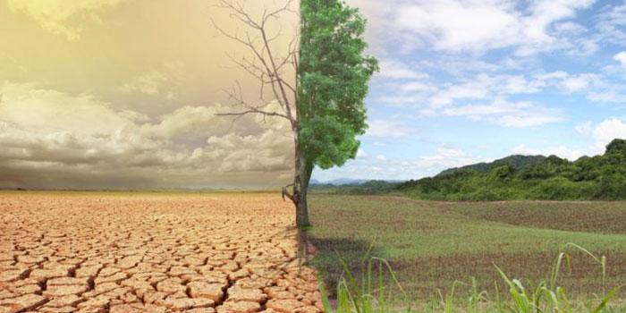 İklim politikalarında Türkiye sonuncu!