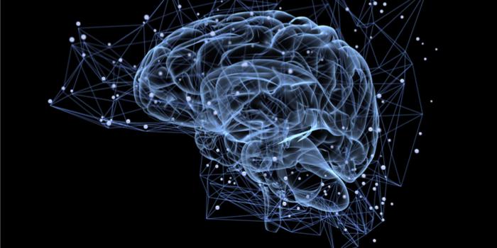 Nöroloji çalışmalarına göre premium sitelerde yayınlanan reklamlar sosyal medyadan daha etkili