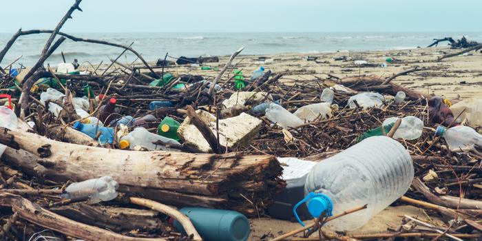 Çevre sorunlarının yüzde 50'si son 35 yılda meydana geldi
