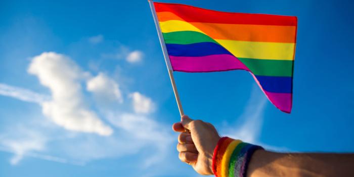 İstihdamda LGBTİ+ Anketi'nin 2018 sonuçları açıklandı