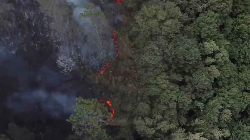 Kiğılı, #1Fidan1Can kampanyasıyla orman yangınlarına...