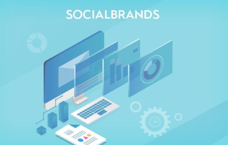 Sosyal medyada eylül ayının en başarılı markaları açıklandı!