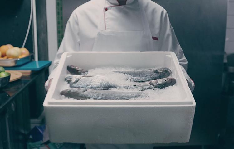 Türk balığı başrolde