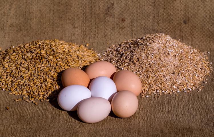 """""""Gezen Tavuk Yumurtası"""" bir pazarlama hilesi mi?"""