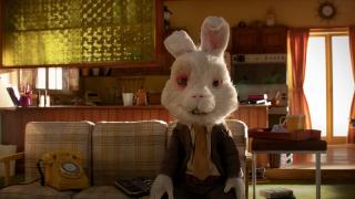 Bir tavşan kozmetik sektörünün dengesini nasıl bozdu?