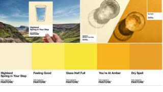 Pantone'dan idrar rengi skalası