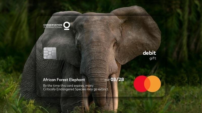 Mastercard geçerlilik tarihi hangi gerçeğe işaret ediyor?