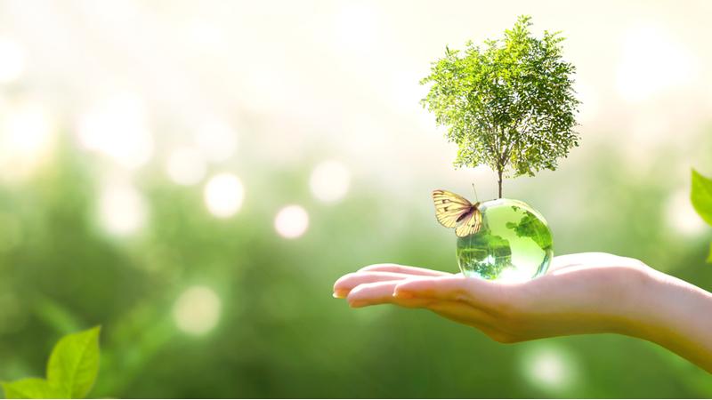 Sürdürülebilir bir gelecek için Penti'den global imza
