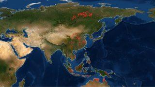 NASA yangın haritası