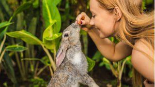Kozmetik devleri hayvan deneylerinin son bulması için güçlerini birleştirdi!