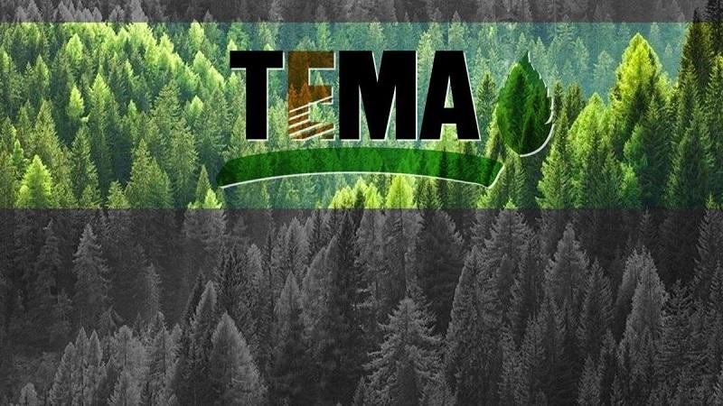 """TEMA hangi şirketin fidan bağışını """"Çevreye zarar verdikleri"""" gerekçesiyle geri çevirdi?"""